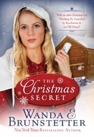 The Christmas Secret book summary