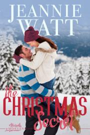 The Christmas Secret book