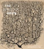 The Beautiful Brain