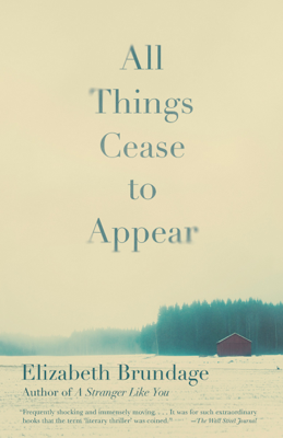 All Things Cease to Appear - Elizabeth Brundage book