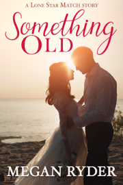 Something Old - Megan Ryder book summary