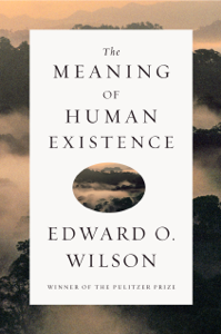 The Meaning of Human Existence ebook