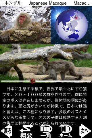 動く!動物図鑑 mini FREEのおすすめ画像1