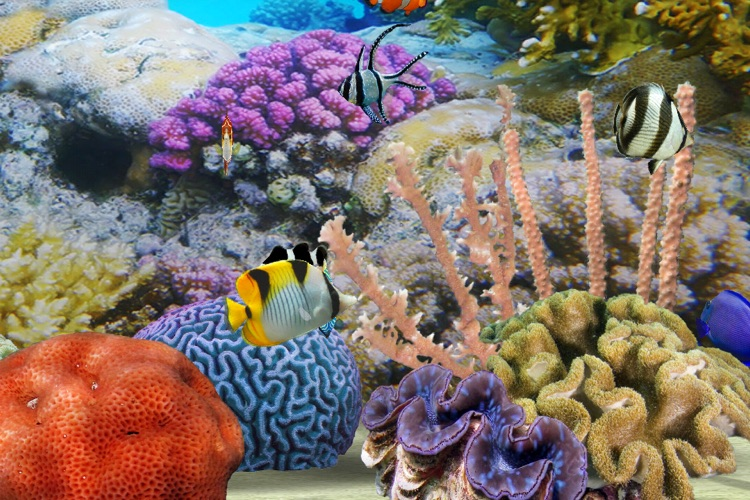 MyReef 3D Aquarium screenshot-2