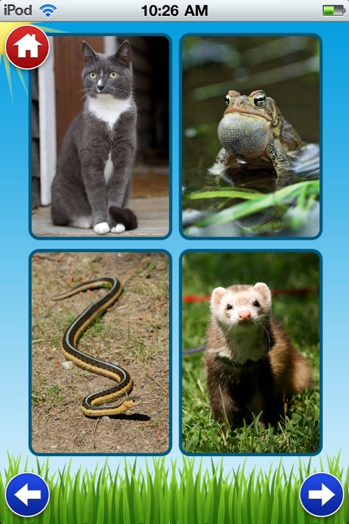 Animal Sounds - Zoo, Pet and Farm Sounds