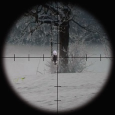 Activities of Shadowland: The Sniper