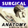 Surgical Anatomy - Premium Edition - Luke Allen