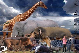 動く!動物図鑑 mini FREEのおすすめ画像2