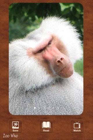Zoo Who? - An Animal Encyclopedia screenshot three