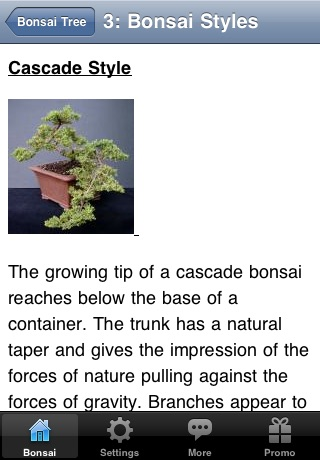 Bonsai Tree - The Art of Growing Bonsai Trees screenshot-3