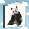 Ucz się słówek - Zabawna gra dla dzieci - Gry dziecko firmy Tailmind