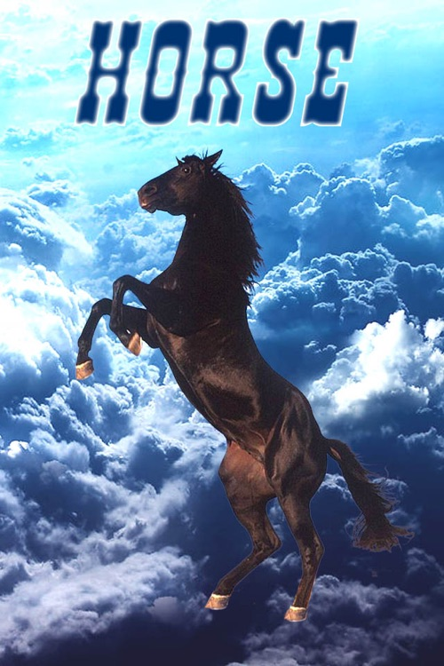 Horse +