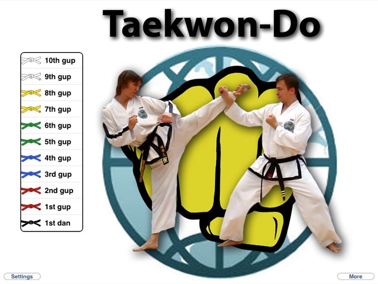 Taekwon-Do HD
