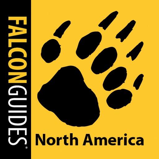 Scats & Tracks of North America
