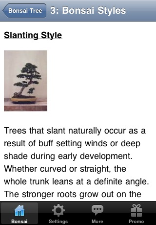 Bonsai Tree - The Art of Growing Bonsai Trees screenshot-2