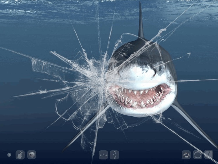 Talking Great White HD - for iPad screenshot-4