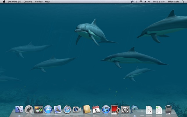 Dolphins 3D Screenshot