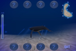 Humpback Whale Lite screenshot three