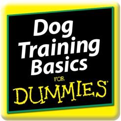ipad 2 instructions for dummies