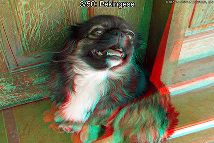 3D Photos screenshot-4