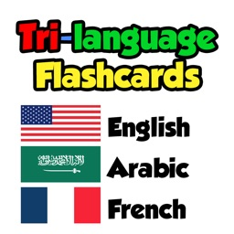 Flashcards - English, Arabic, French
