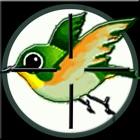 Bang! Bang! Bird icon