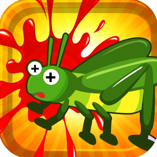 A Cricket Chase And Smash Puzzle Brain Teaser Game Pro Full Version