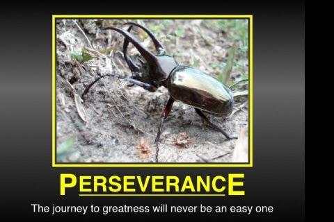 Instant Motivator Free