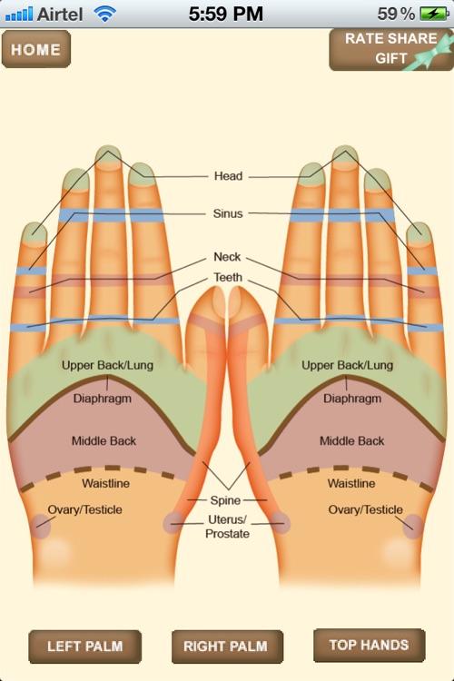 iPocket Hand Reflexology screenshot-3