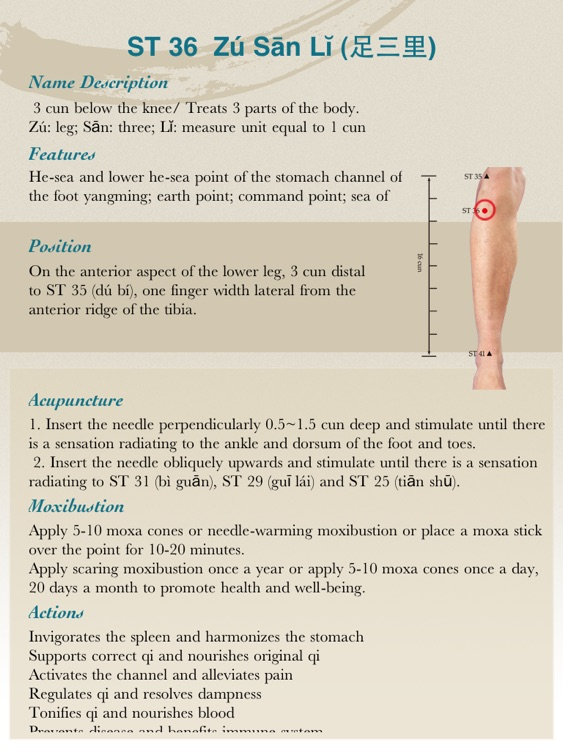 Anatomical Illustration of Acupuncture Points Lite