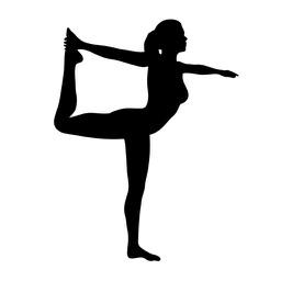 Yoga Trainer PRO
