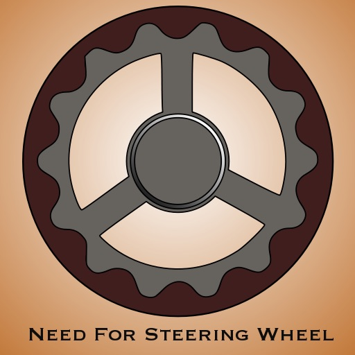 NFSW - Need for Steering Wheel?