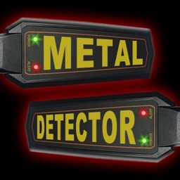 A Metal Detector Prank