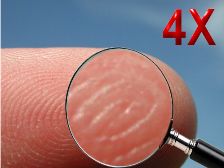 32X Magnifying Glass HD