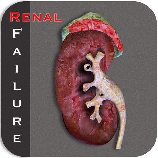 Renal Failure icon