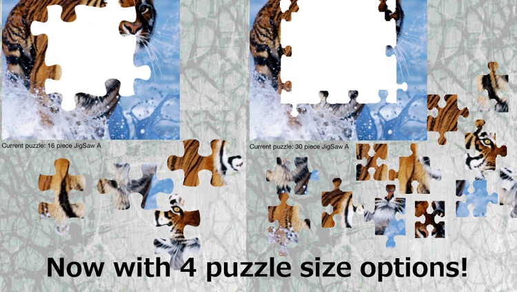 Photo JigSaw Puzzle Free Version