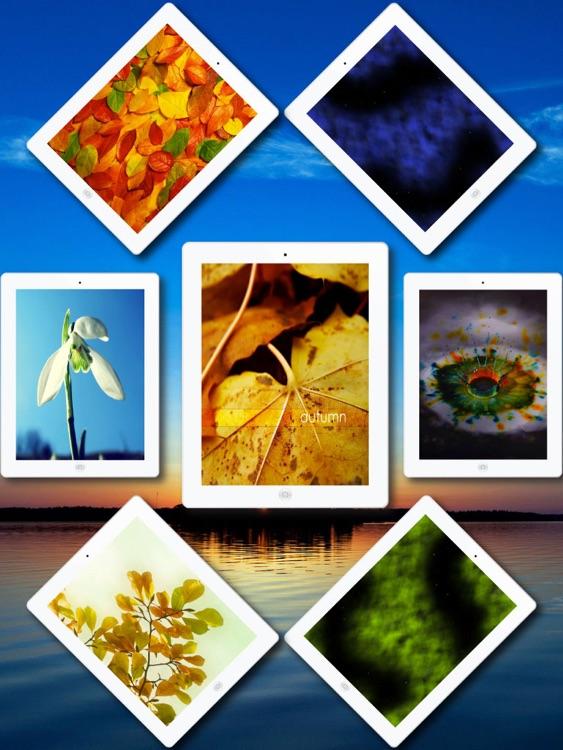 Wallpapers for New iPad screenshot-4
