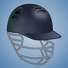 Activities of Flick Cricket 2