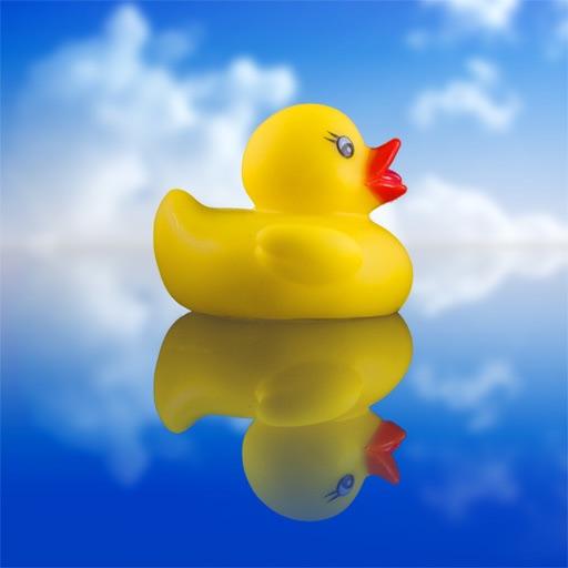 DuckDuckDuck icon