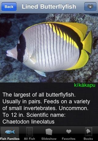 Reef Fish Hawaii screenshot-4