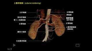 e画像解剖のおすすめ画像3