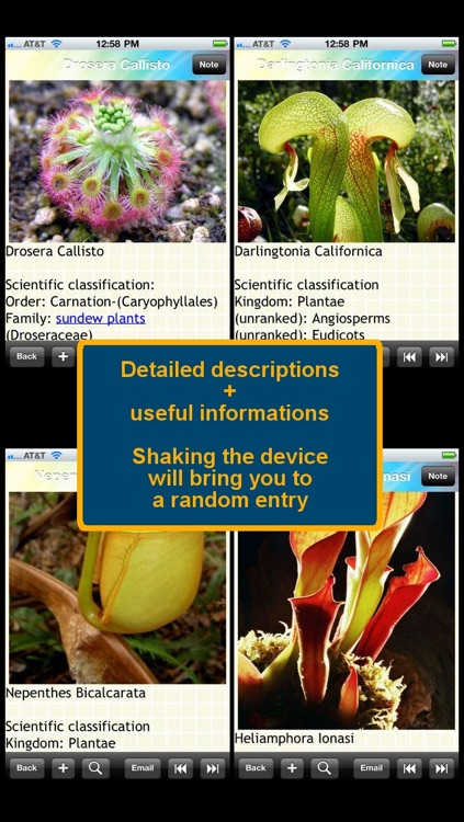 Carnivorous Plants Encyclopedia