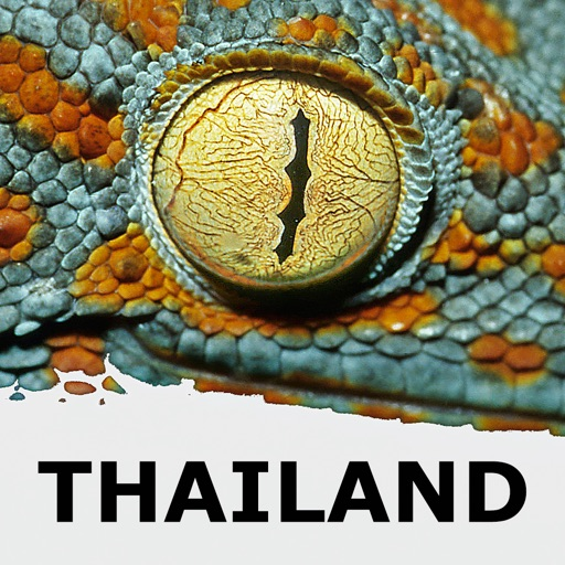 Thailand Animal Wildlife