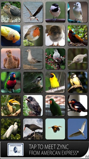 Bird Sounds FREE on the App Store