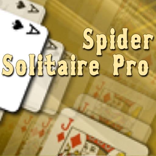 Spider Solitaire Pro.