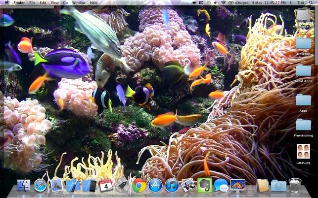 desktop aquarium relaxing live wallpaper background on the mac app