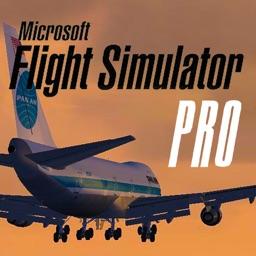 Flight Simulator Pro