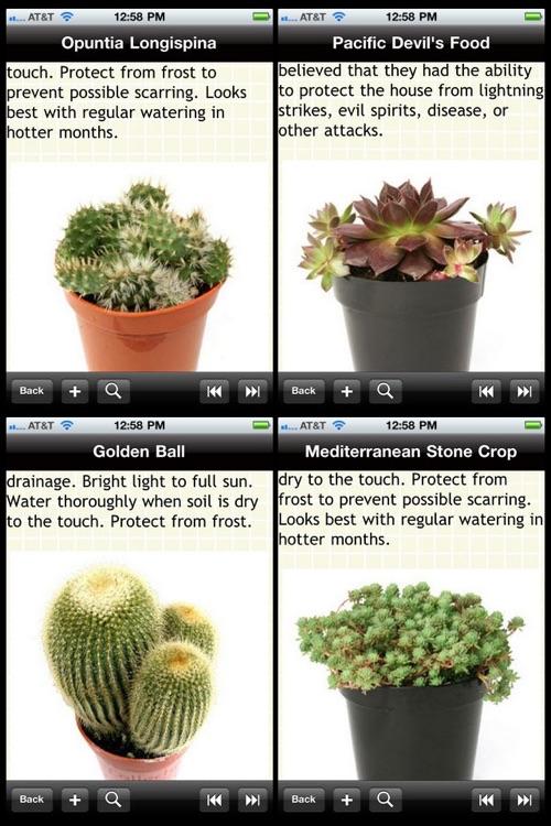 Cactus Plant Encyclopedia