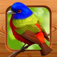 Codes for Bird Matching Hack