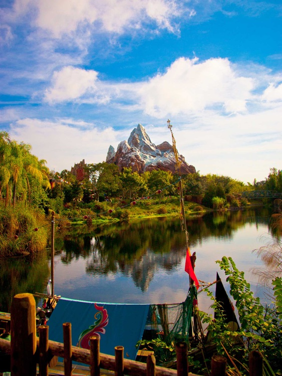 Animal Kingdom Wallpapers from Disney Photography Blog screenshot-3